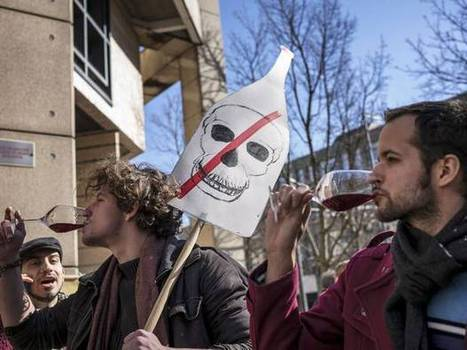 Burgundy winemaker cheers a 'victory for people power' after conviction for refusing to spray vines with pesticides is overturned   Burgundy Flavour   Scoop.it