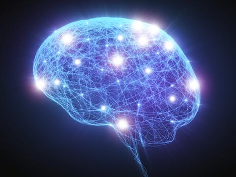 Curcuma entier : voici comment il guérit le cerveau endommagé | Cette nature qui nous soigne | Scoop.it