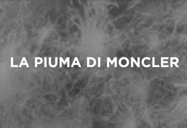 Report vs Moncler, l'impatto social della #pelledoca - businesspeople.it | MarKettivamente | Scoop.it