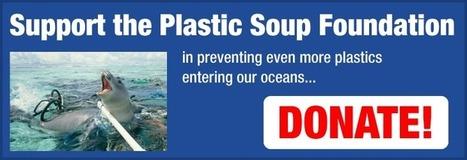 Plastic Soup Foundation   Plastic Pollution   Scoop.it