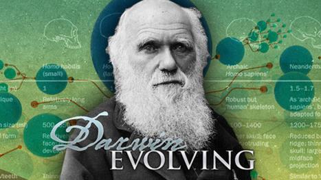 L'évolution est-elle seulement darwinienne ? - notre-planete.info | Ecology view | Scoop.it