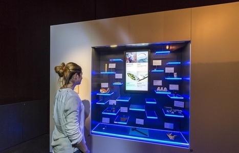 Toulouse: Et si vous exposiez un objet au Muséum ? | Médiation scientifique et culturelle | Scoop.it