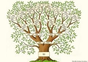 La généalogie... qu'est-ce que c'est ? - Le Blog Généalogie - Toute l'actualité de la généalogie - GeneaNet | Histoire Familiale | Scoop.it