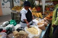Entre agroécologie et souveraineté alimentaire : l'Equateur, un pays en mouvement.   Questions de développement ...   Scoop.it