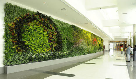 Birmingham Unveils Largest Green Wall in U.S. Airport | Landscape Creative Inspiration | Scoop.it