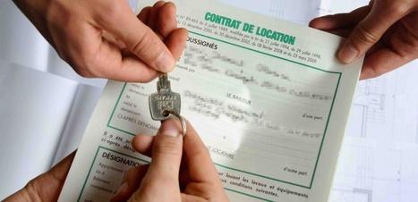 Location : tout savoir sur le bail d'habitation | Immobilier | Scoop.it