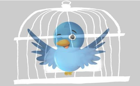 Media & Mass Communications: The limits of Facebook and Twitter. Analysis by Anne Allmeling   An Eye on New Media   Scoop.it