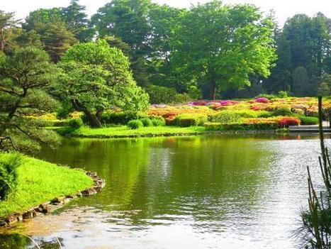 Tweet from @GUIDEJAPANTOURS | My Japanese Garden | Scoop.it