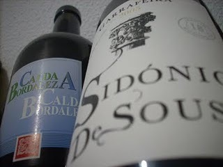 Pingas no Copo: Bairrada vs Bairrada | Wine Lovers | Scoop.it