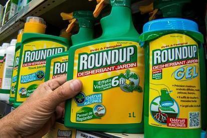 Monsanto's Roundup Could Get Whacked by European Regulators | Food issues | Scoop.it