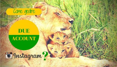 Come avere 2 account Instagram sul telefono? | Social Media Consultant 2012 | Scoop.it