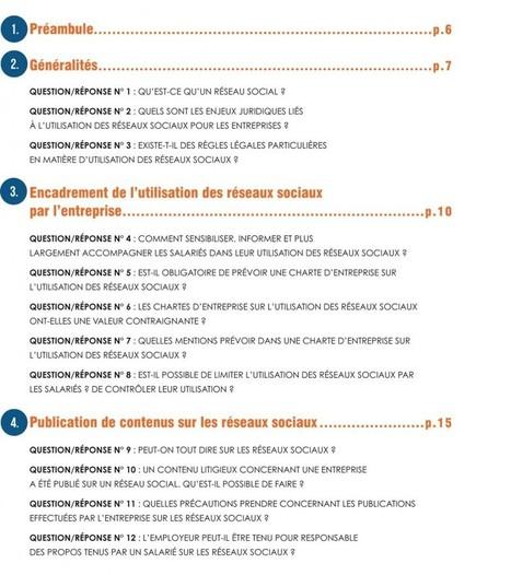 Les enjeux juridiques des réseaux sociaux   Le Club des Elus Numériques   Le Club des élus numériques   Scoop.it