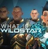 Telecharger Wildstar gratuit : jeu complet, astuces, soluce, code, test ... | L'actualité des jeux pc | Scoop.it