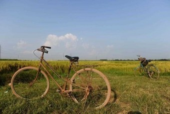Vietnam's economy steady as it grows | Vietnam | Scoop.it