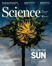 Comment font les tournesols pour suivre le soleil ? | Le Carrefour du Futur | Scoop.it