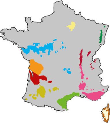 Cartes de modélisation des risques maladies de la vigne - Institut Francais de la Vigne et du Vin | Graines de doc | Scoop.it