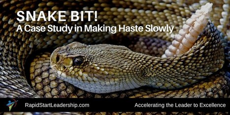 Snake Bit!  A Case Study in Making Haste Slowly | Surviving Leadership Chaos | Scoop.it