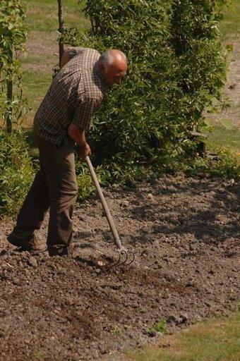 Que faire au jardin en octobre | pour mon jardin | Scoop.it