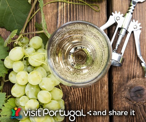 The Wines of Centro de Portugal | Portuguese Awarded Gourmet Products | Scoop.it