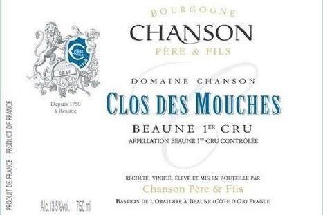 Entire vintage destroyed from Burgundy clos | Autour du vin | Scoop.it