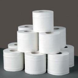 Could Your Toilet Paper Lead to Major Plumbing Repairs?   Deschutes Plumbing Company   Scoop.it