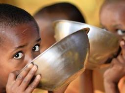 Why Africa can't feed itself | Health Issues | Scoop.it