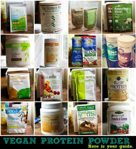 Vegan Protein Powders for Smoothies: My BIG Guide! | Vegetarian and Vegan | Scoop.it