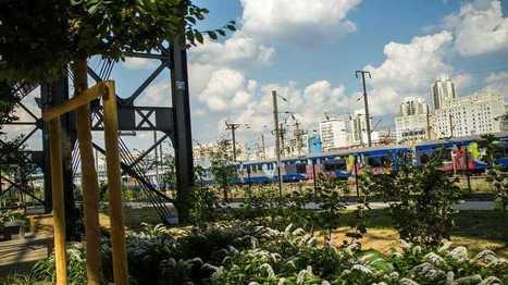 Paris-culteurs, un projet pour créer 100 hectares de végétation à Paris - France Bleu | Actualités écologie | Scoop.it