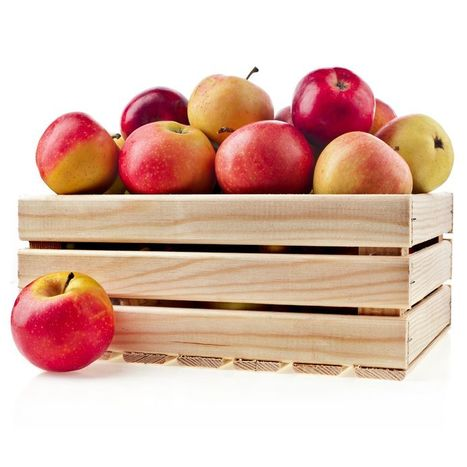 Learn A Few Tricks On How To Store Fruit Properly | eCellulitis | Healthy Food Tips & Tricks | Scoop.it
