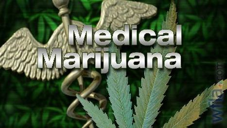 Charges dropped against Florida couple in medical marijuana case (VIDEO) | BloodandButter | Scoop.it