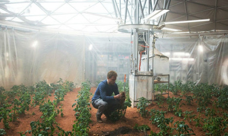 Scientists grow sweet potatoes in Martian greenhouse - Futurity | CALS in the News | Scoop.it