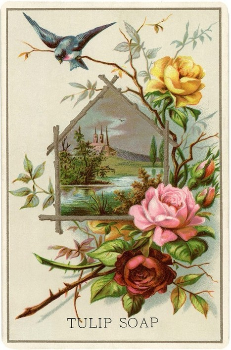Pretty Vintage Roses Picture! - The Graphics Fairy   Decoupage   Scoop.it