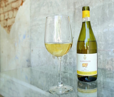 Le Marche Wine in US: 2014 Saladini Pilastri Pecorino White Wine | Wines and People | Scoop.it