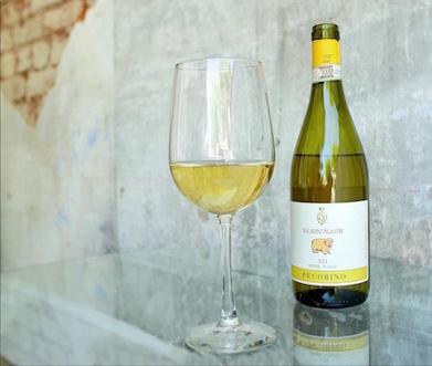 Le Marche Wine in US: 2014 Saladini Pilastri Pecorino White Wine | Wines and People | Scoop.it