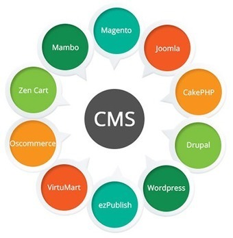 Competent Web Development Companies across India Attaining Unprecedented Success | Website Design, Development and SEO | Scoop.it