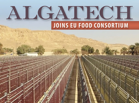 Algatechnologies joins FoodConnects consortium   Eco Innovation   Scoop.it
