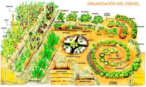 Cultivo Vibracional Ecológico | Huerta ecológica | Scoop.it