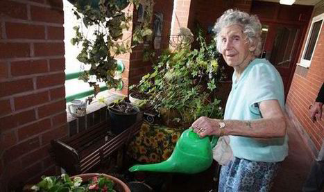 Pensioner told to remove plants from flat - for health and safety reasons - Express.co.uk | Health and safety at work | Scoop.it