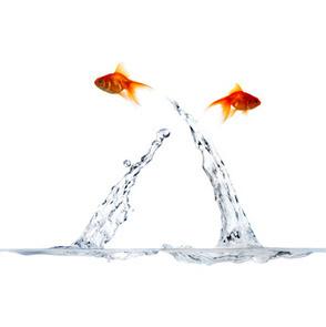 Pensée systémique et niveaux de Changements@changements en action   La systémique   Scoop.it