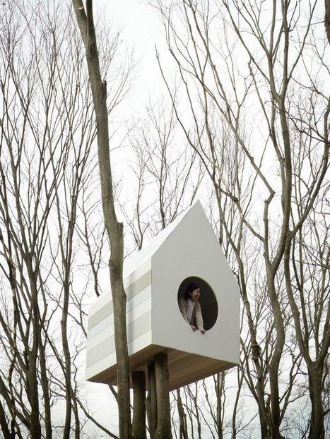 Cabane dans les arbres pour les oiseaux   hotel-marketing   Scoop.it