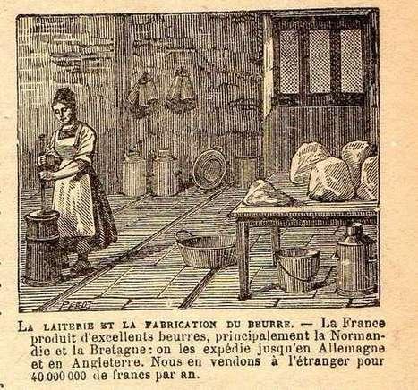 Généalogie autour du Houlme - 1626 Brevet d'une vache à ...   Généalogie et histoire, Picardie, Nord-Pas de Calais, Cantal   Scoop.it