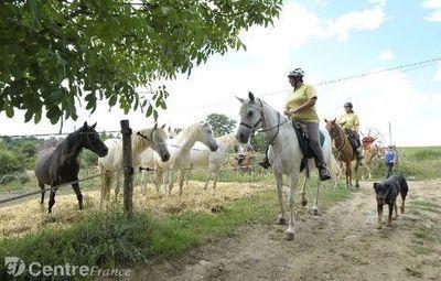 Randonner à cheval est désormais l'une des cartes touristiques à jouer pour le Département | Actualités du Limousin pour le réseau des Offices de Tourisme | Scoop.it