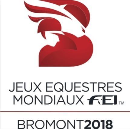 Bromont n'accueillera pas les JEM / Politique / Cheval de A à Z / Accueil - leperon.fr | Cheval et sport | Scoop.it
