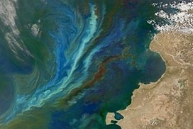 Australia seeks to limit ocean 'geoengineering'