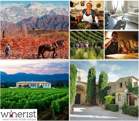 Winerist Launches Innovative Wine Travel Booking Platform  -   Winerist | Wine Travel | Scoop.it