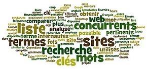 Optimisez votre référencement | Institut de l'Inbound Marketing | Scoop.it