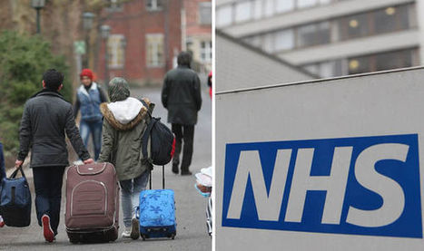 Video will show strain migration puts on NHS | Business Video Directory | Scoop.it