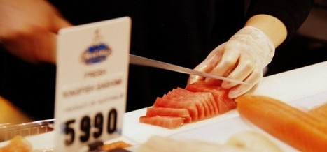 The Health and Sustainability Issues of Eating Fish - Greener Ideal   Sustainable Sushi   Scoop.it