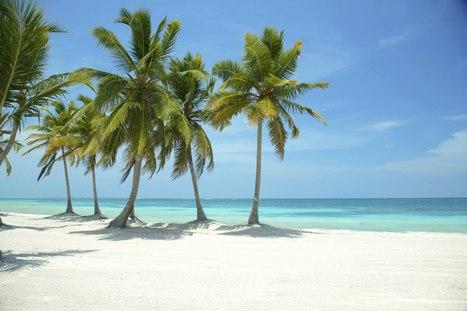 Beach Bonanza: Top 4 beaches in the Dominican Republic | All things Dominican Republic | Scoop.it