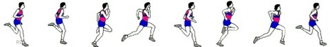 Animaciones de diferentes disciplinas deportivas. | Educación Física. Compartiendo en la Red | Scoop.it